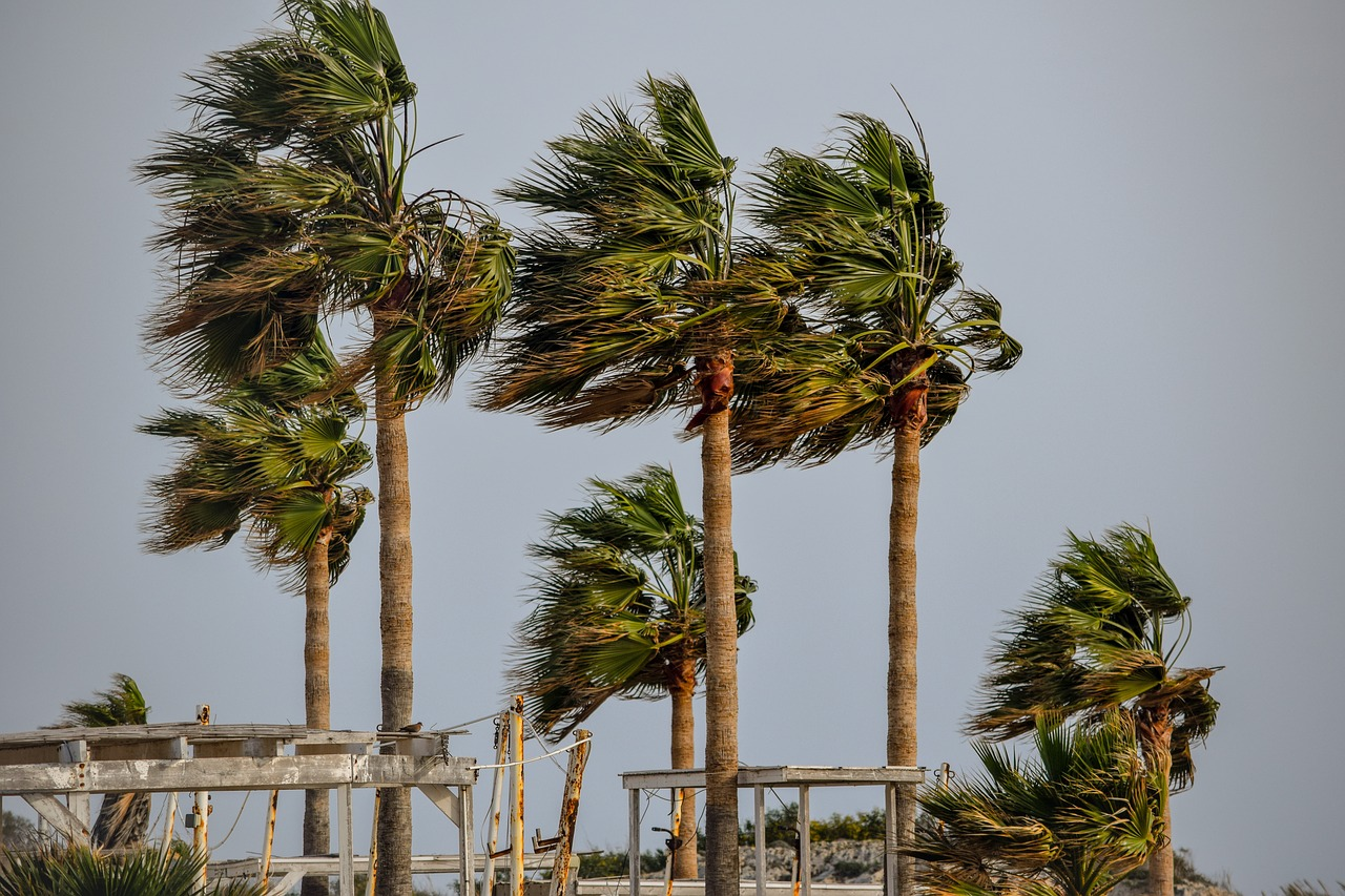 Be Aware And Be Prepared - Tropical Storm Alberto May Cause Severe ...